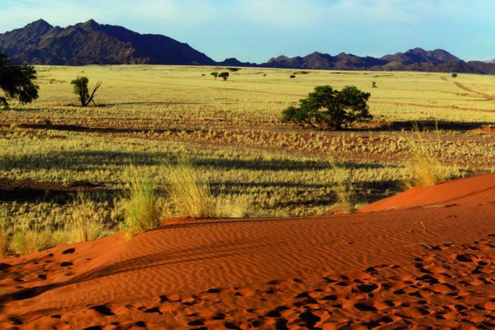 Découvertes Namibiennes <br/> <span style='font-size:20px;'>Namibie</span>