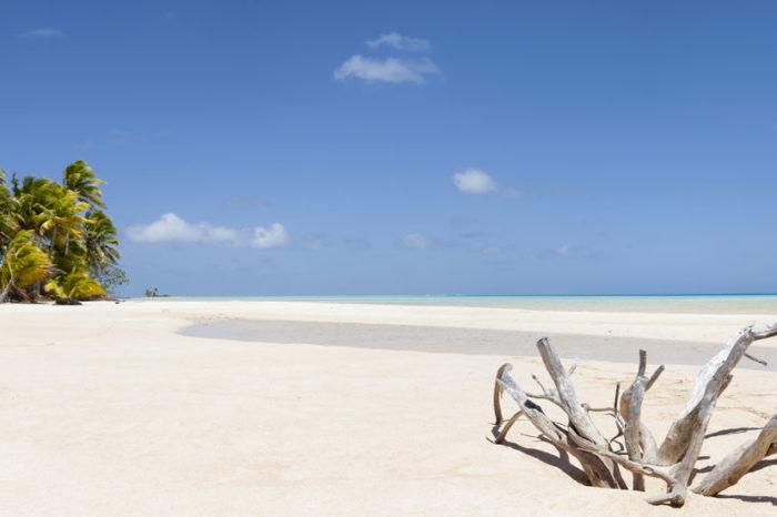 Robinsonnade à l'îlot Tibarama <br/> <span style='font-size:20px;'>Nouvelle-Calédonie </span>