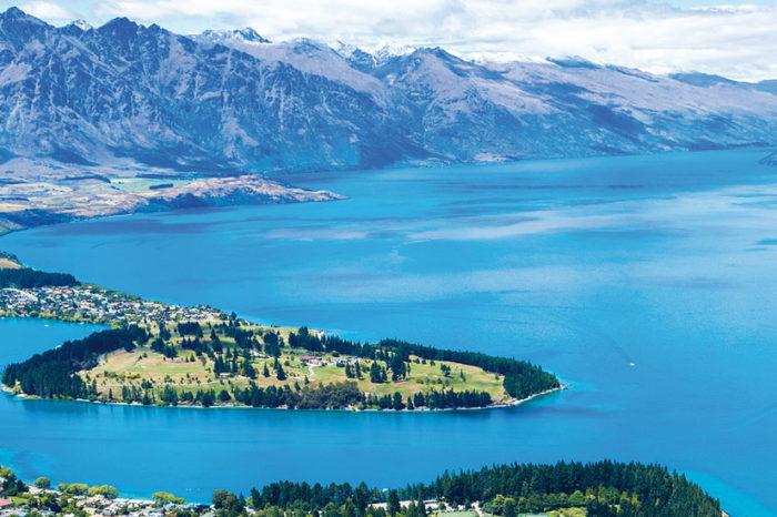Essence de Nouvelle-Zélande <br/> <span style='font-size:20px;'>Nouvelle-Zélande</span>