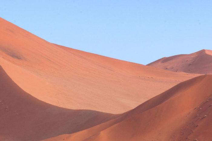 Sur les Pistes Namibiennes <br/> <span style='font-size:20px;'>Namibie</span>