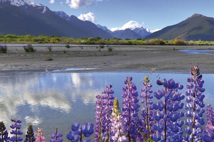 Nouvelle-Zélande : Terre de contrastes <br/> <span style='font-size:20px;'>Nouvelle-Zélande</span>
